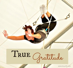 trapeze tg